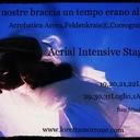 Loretta Morrone